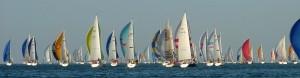 2010 RTI Race General view of fleet ahead